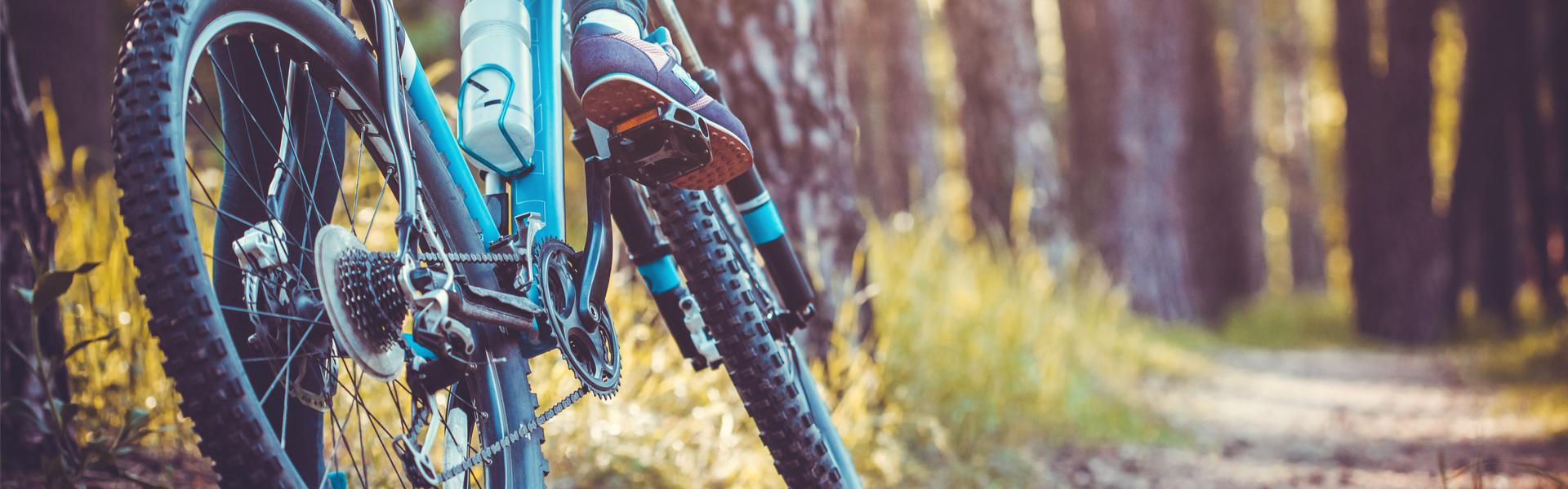 Bike Wald